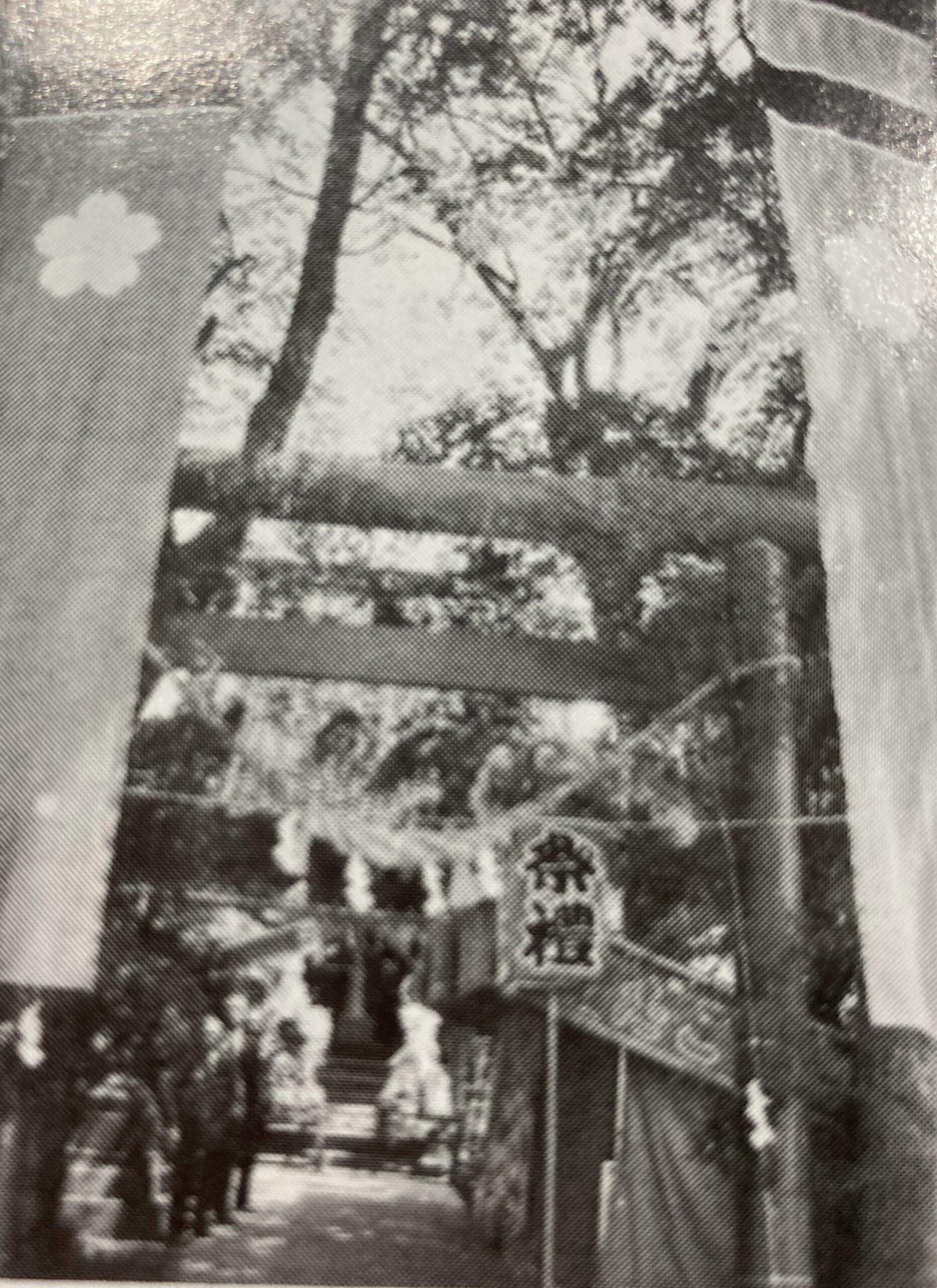日枝社(富山市駒見・田刈屋新町の氏神神社)06